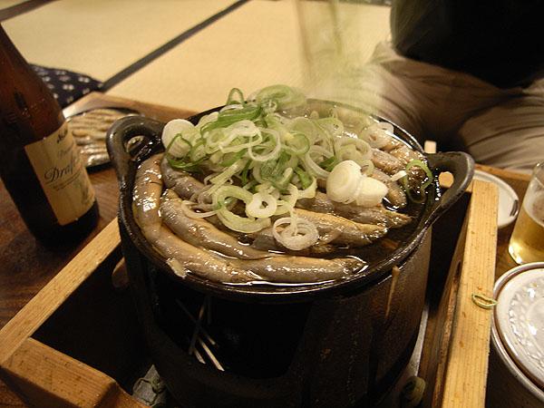 070810_komagatadozeu02.jpg
