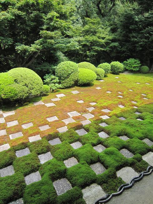 100816-tofukuji15.jpg