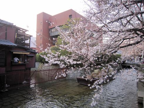 120408-takasegawa01.jpg